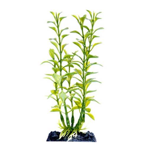 PENN PLAX Műnövény 18 cm Blooming Ludwigia (Green) S