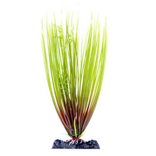 PENN PLAX Műnövény 28 cm Hair Grass L