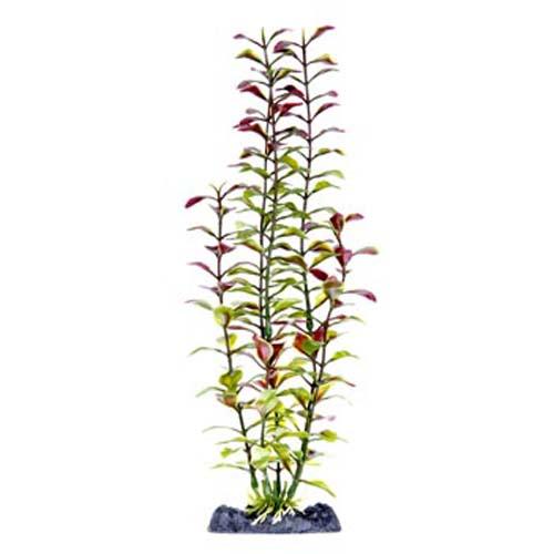 PENN PLAX Műnövény 33 cm Blooming Ludwigia (Red) XL