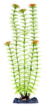 PENN PLAX Műnövény 33 cm Plant-XL Ambulia