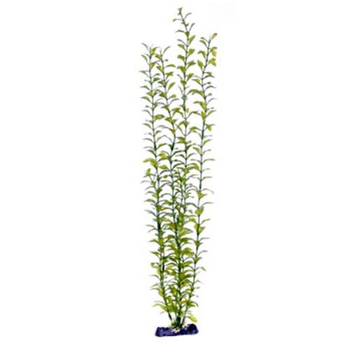 PENN PLAX Műnövény 56 cm Blooming Ludwigia (Green) Giant
