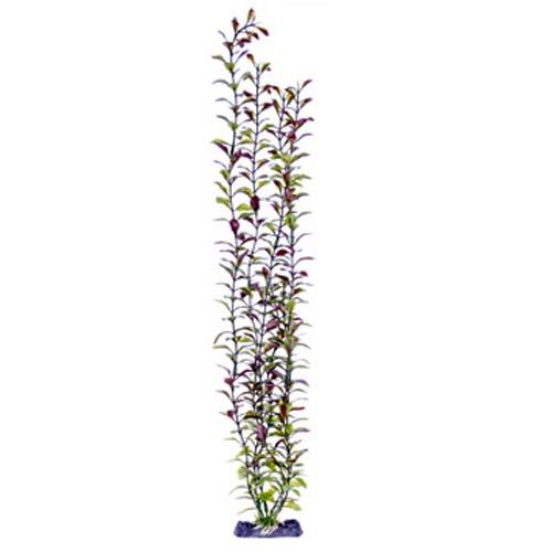 PENN PLAX Műnövény 56 cm Blooming Ludwigia (Red)  Giant