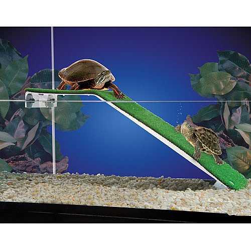 PENN PLAX REPTOLOGY teknős rámpa 44,5x15,2cm