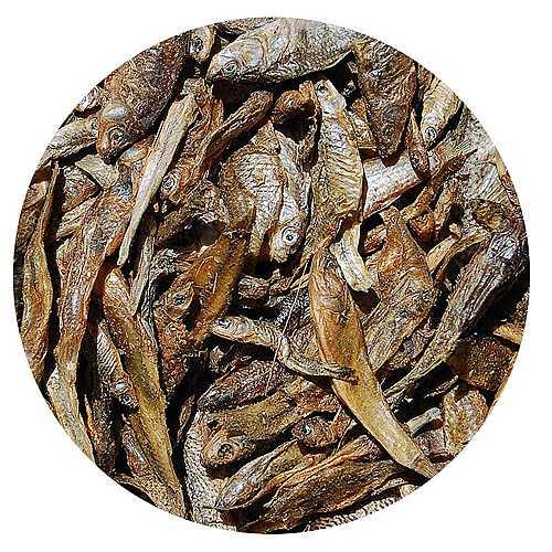 COBBYS PET FISHES 50g szárított hal